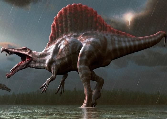 Spinnosaurus