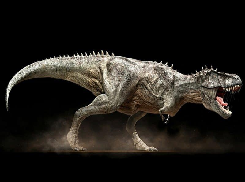 Tiranosaurio rex imagen grande