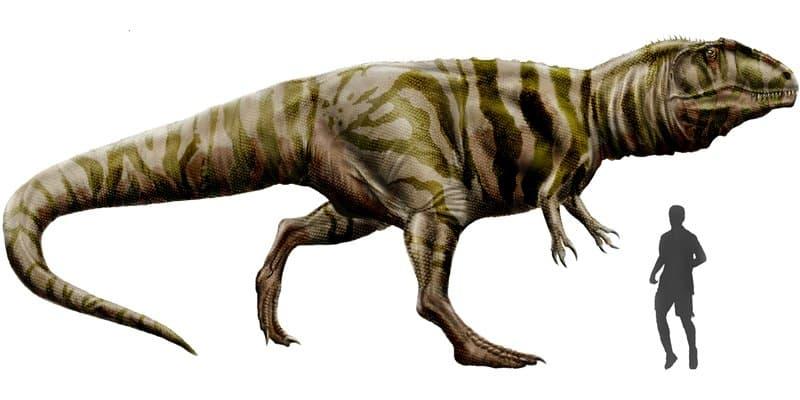 Giganotosaurus - Dinosaurio peligroso