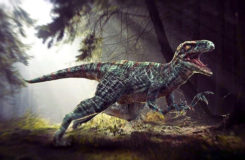 Velociraptor dinosaurios peligrosos